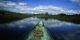 Orrinoco River Leeches
