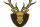 Gorky Deers